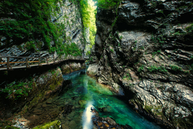 The Vintgar Gorge (Soteska Vintgar)