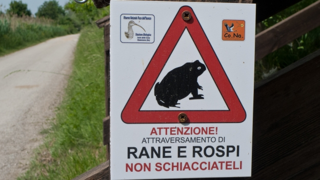 Warning sign: don't squash the frogs and toads