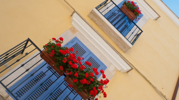Window boxes - Puglia