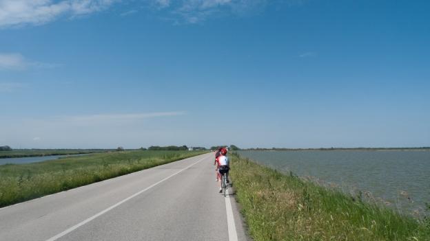 Cyclists, Lago di Comacchio