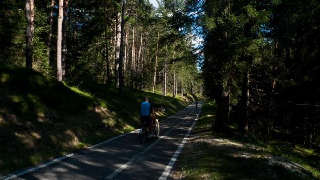 Lunga via delle Dolomiti near Cortina d'Ampezzo (Veneto)