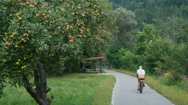 Cycleway in the Südtirol near Brixen (Bressanone)