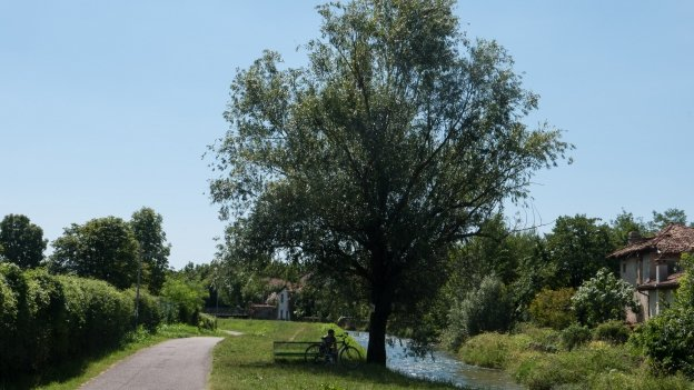 München-Venezia cycle route: cycleway beside the Fiume Meschio near Vittorio Veneto