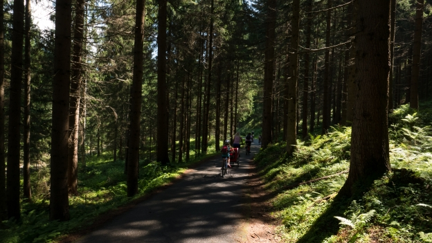 Cyclists on the Drauradweg (Ciclabile della Drava) between Toblach and Lienz
