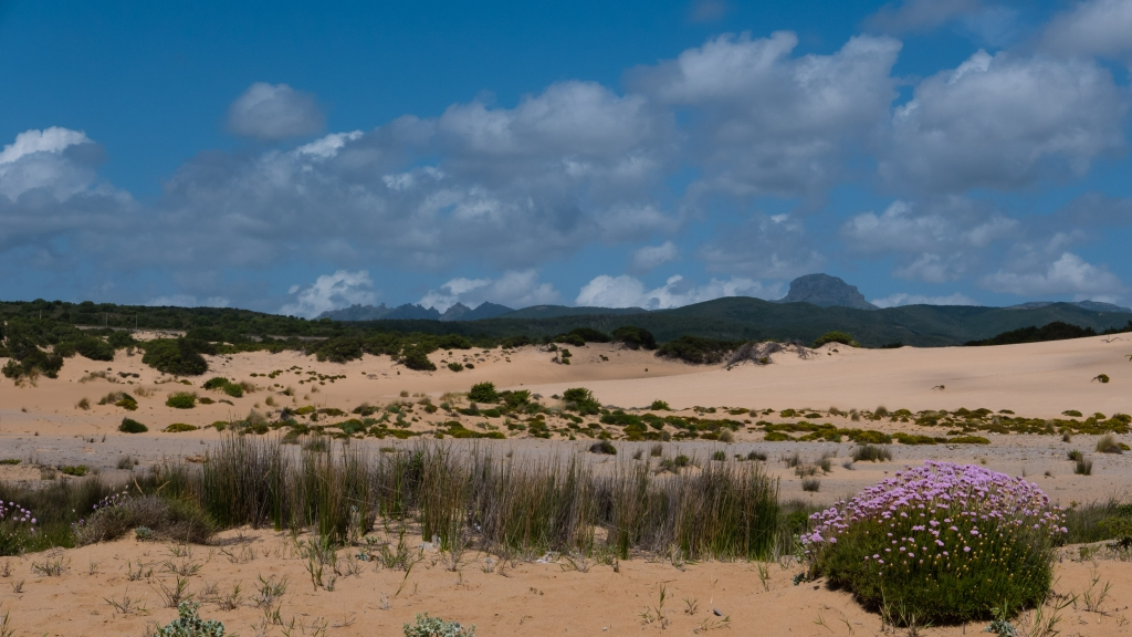 View of the Piscinas Dunes