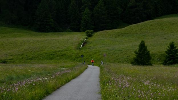 Cyclist near Graun im Vinschgau