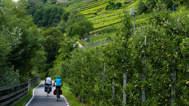 Cyclists on the Vinschgau Radweg/Via Claudia near Kastelbell-Tschars (Castelbello-Ciardes)