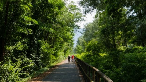 Cycleway near Bozen