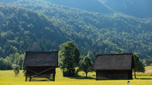 Kozolci (for traditional haymaking) near Bohinjska Bela