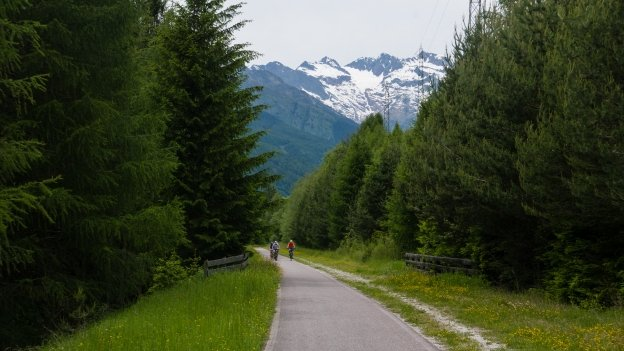 Section of cycleway on the Brennerradroute near Brenner