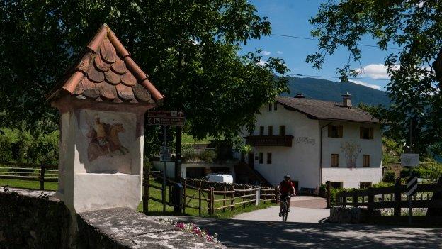 Cyclist on the Brennerradroute  near Vahrn (Varna)