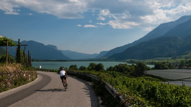 Cyclist on the Überetsch Radroute cycleway near the Kalterer See (Lago di Caldaro)