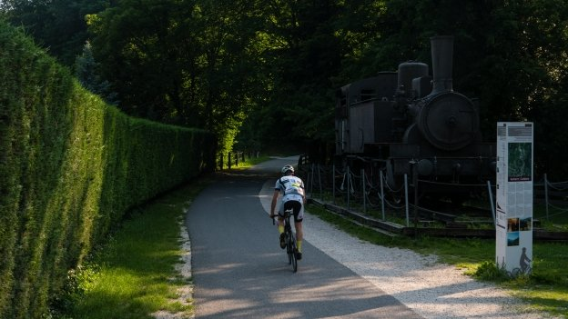 Cyclist on the Südtirol Radweg in Kaltern (Caldaro)
