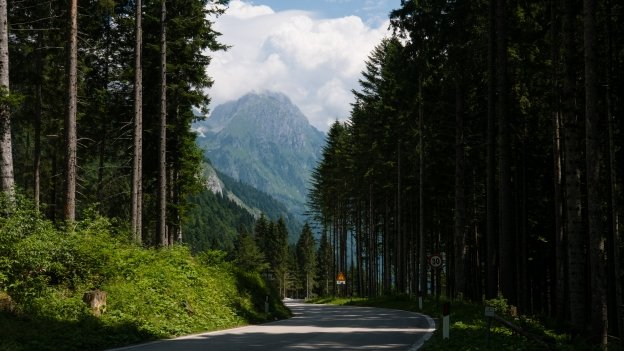 In the Val Pesarina on the SS465