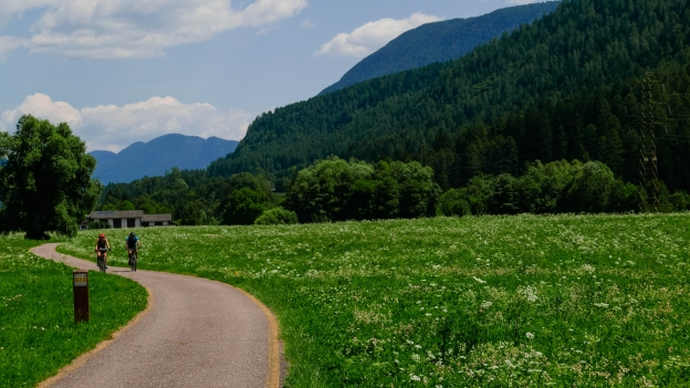 Cyclists on the Val di Sole cycleway near Croviana