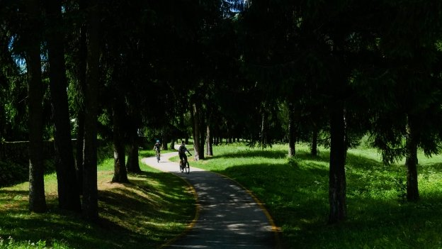 Cyclists on the Val Rendena cycleway near Pinzolo