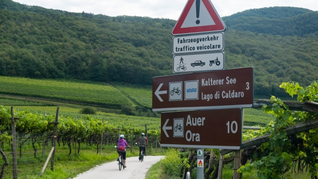 Cyclists on the cycle route between Kaltern (Caldaro) and Auer (Ora)