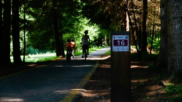 Cyclists passing the 16-kilometre marker on the Val di Fiemme Val di Fassa cycleway near Predazzo