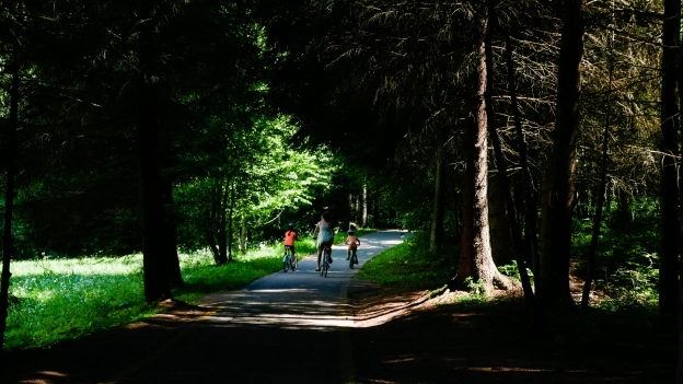 Cyclists on the Val di Fiemme Val di Fassa cycleway near Predazzo